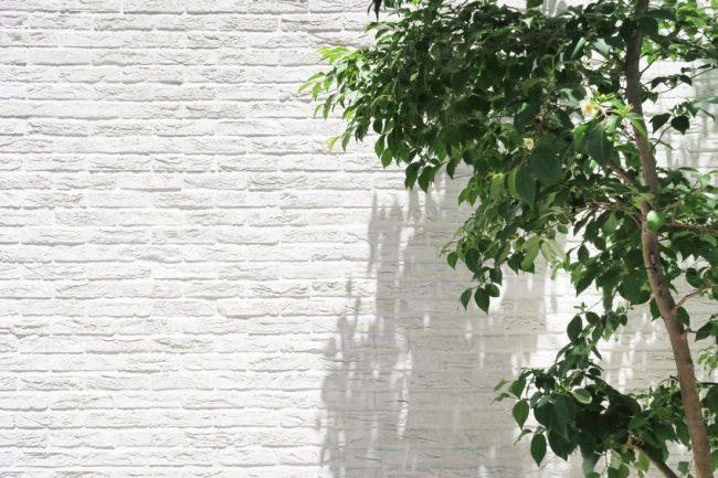 白い外壁に映える緑
