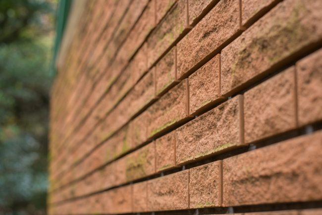 うっすら苔が生えたレンガの外壁