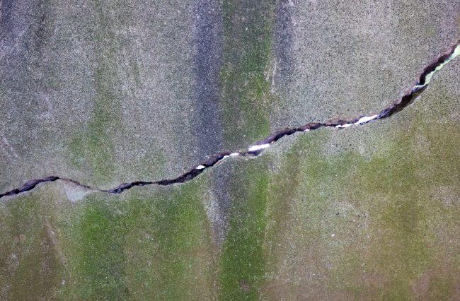 コンクリート壁のひび割れと苔